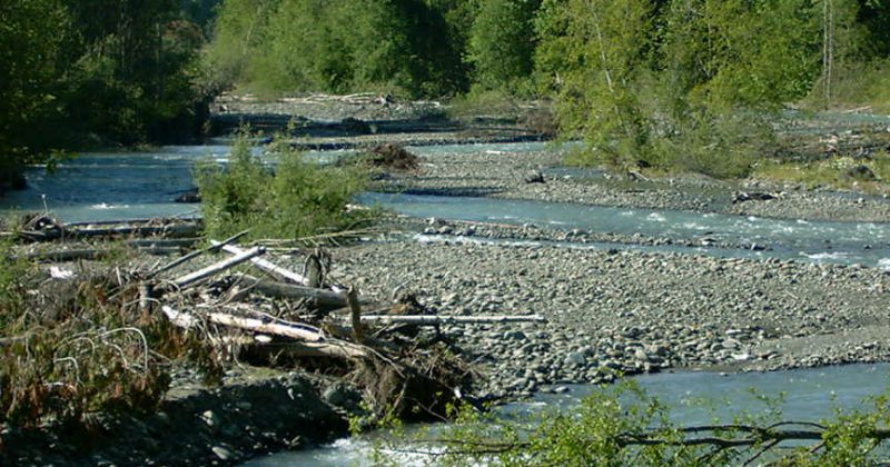 Scouting the Dungeness River